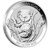 Australien - Koala 2021
