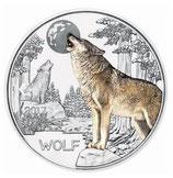 Tiertaler Wolf 2017 mit Folder