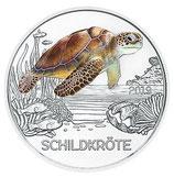 Tiertaler Schildkröte 2019 mit Folder