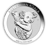 Australien - Koala 2020