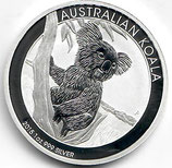 Australien - Koala 2015