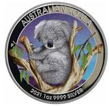Australien - Koala 2021 coloriert