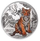 Tiertaler Tiger 2017 mit Folder