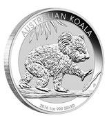 Australien - Koala 2016