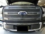 Snap On Bug Screen 2015-16 Ford  F150