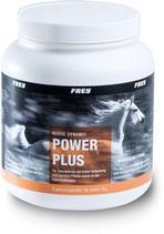 Horse Dynamic Power Plus + Magnesium + Lysin
