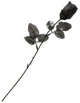 Rose noir/1