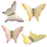 Papillon en sucre/1
