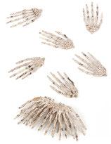 Mains squelette/12
