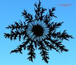 Art.Nr.: 8021F Fensterbild Silberdistel