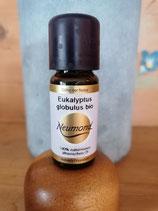 Eukalyptus bio - ätherisches Öl von Neumond