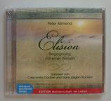 Elision - BEGEGNUNG mit einer WEISEN - Peter Allmend