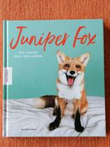 Juniper fox - von Jessika Coker