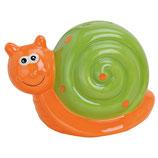 Schnecke orange - grün