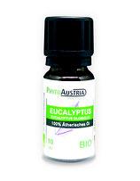 060 Eucalyptus  100% BIO Ätherisches Öl