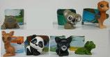 Natoons Tierkinder der Welt FT009 - FT016