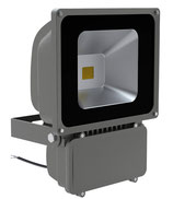 Projecteur LED 80W Etanche