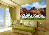 Cuadro personalizado o con imagenes de caballos tamaño .70x1.20 full color