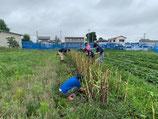 自然栽培農学校 みつばちと畑のがっこう(定額制)