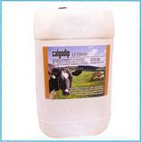 Calgodip D, enthält 5000ppm frei verfügbares Jod pro kg (20Kg)