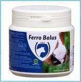 Ferro Bolus (24 Stück)