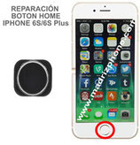 Cambiar / Reparar Boton Home iPHONE 6s / 6s Plus