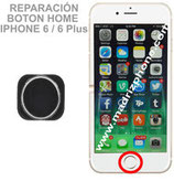 Cambiar / Reparar Boton Home iPHONE 6 / 6 Plus