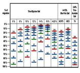 "Protein Marker ""wide Range"" 6,5 kD to 270 kD"
