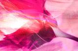 ROUGE FLOWER II
