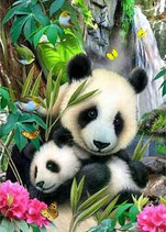 PANDA ET SON BEBE - KIT BRODERIE DIAMANTS