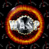 Значок WASP 2