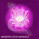 Magenta Lotus Mandala