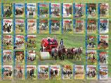 STARKE PFERDE Zeitschrift (bis Jahrgang 2015)