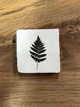 Mini keramieken tegeltje met afbeelding 'Wit' Varen