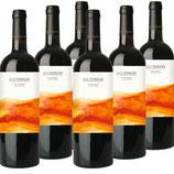 6 BOTELLAS - SOLTERROIR 20 Meses 2012 Vendimia Seleccionada