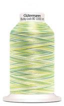 Gütermann Bulky-Lock 80 1000m Multicolor light green 9963