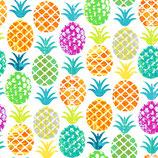 ananas  Multicolore