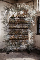 DRIED-PROSECCO WALL BUNDLE