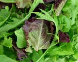 Salades mélangée