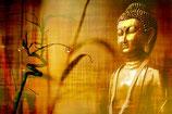 Online-Meditation, 5x