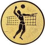 """A2.19 - Emblem """"Volleyball"""" Ø 50mm"""