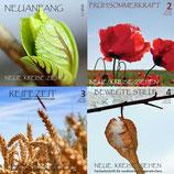 NKZ - Jahrgang 2010 (Heft 4) (1, 3 und 4 ausverkauft)