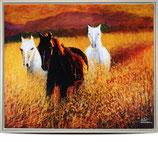 """Kunstdruck """"Drei Pferde"""""""