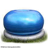 FitPAWS Donut, large
