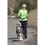 Jogging Leine / THS Laufleine
