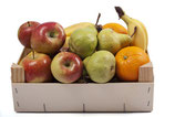 Obst Kiste BÜRO