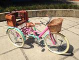 Triciclo Adulto Banca Alta Hannah Baker