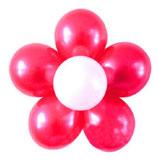 kleine Luftballon-Blume