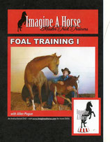Enhanced Foal Training I