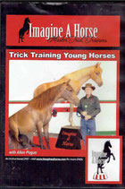 Trick Training Young Horses